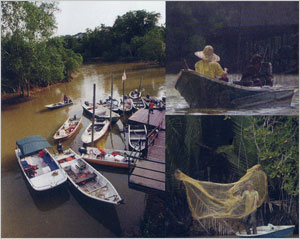 Sungai Timun - Pangkalan Nelayan (Fisherman Bay)